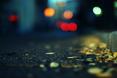 Back to the Beginning (NyYankee) Tags: autumn rome leaves 50mm bokeh f14 sanlorenzo nikkor frontpage
