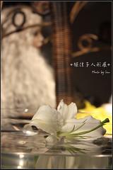 堀佳子 画像39
