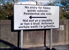 welsh lost in translation