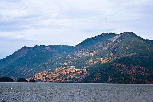 Harrisson Lake