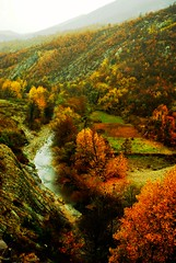 fall (Thalia Nouarou) Tags: autumn trees orange mountains green fall nature colors yellow river landscape nikon hellas greece travelogue thraki nikond60 ksanthi     pomakochoria wwwgreeceinvisioncom   wwwthalianouarouwebscom wwwepathlogr wwwtraveloguemaggr  greeceinviision