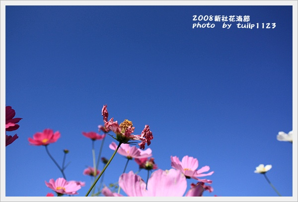 IMG_2204