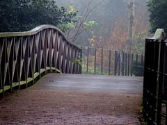 Wirral, Birkenhead Park (Tony Shertila) Tags: park bridge england mist vintage gate seat retro cobweb birkenhead railing wirral
