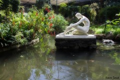 Estufa Fria. (benitojuncal) Tags: parque lisboa lisbon jardin estanque eduardo vii orton estufa efecto fria