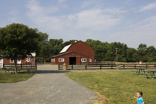 Frying Pan Farm Park