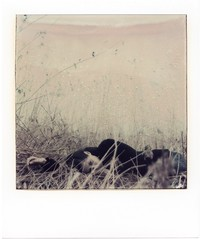.27. (andrenzo) Tags: fourlines andreacolombo polaroid pola girl portrait ragazza ritratto vintage sx70 hand eye occhio malinconia canne lago time zero composition love photo photography