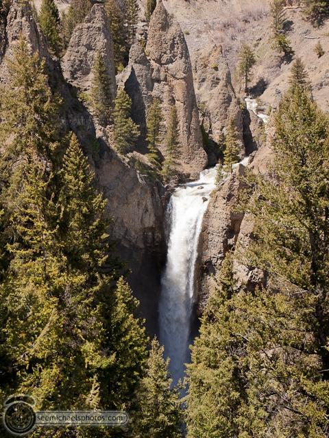 Yellowstone Day 1 52611 © Michael Klayman-040