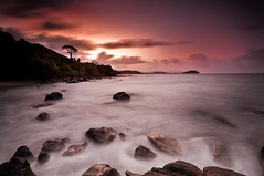 Crépuscule brumeux | Misty twilight (Erick Loitiere) Tags: sunset sea sky mer seascape tree misty clouds landscape coast rocks ciel shore erick cote nuages paysage milky arbre rochers couchédesoleil cokin guyane 973 frenchguiana canonef1740mmf4l longueexposure mywinners abigfave aplusphoto z121 megashot 97300 goldstaraward loitiere erickloitiere ricoliki