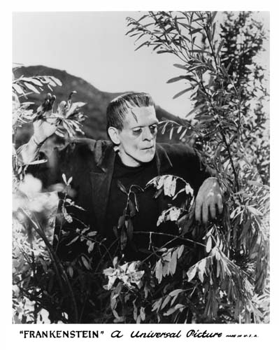 frankenstein_still6.jpg