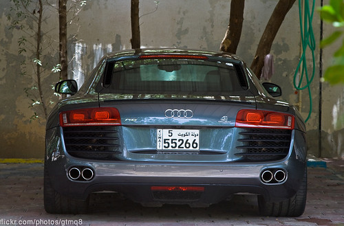 Audi R8 in the shade