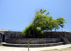 Fort Gaines, appearing tree in disappearing gun enclosure - by divemasterking2000