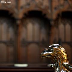 Bird of Pray (Sir Cam) Tags: cambridge england worship university eagle pray sunday chapel selwyncollege sircam