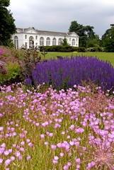 Dreaming of Kew Gardens (picaddict) Tags: travel pink flowers england kewgardens london nature kew explore botanicalgarden royalbotanicgardens inspiredbylove mywinners explorewinnersoftheworld thegalleryoffinephotography