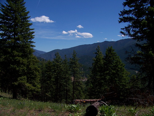 From trail 205