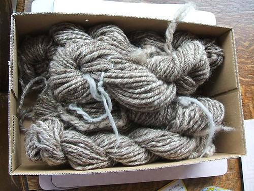 Plied Blue Faced Leicester