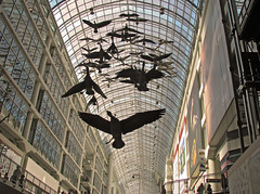 Flight Stop (ash2276) Tags: light sculpture toronto ontario canada art birds mall shopping geese downtown ashley centre center tourist goose ceiling queen shoppingmall eaton canadiangeese yonge eatons dundas eatoncentre canadageese attraction mycity handtinted on michaelsnow ald torontoeatoncentre torontophotographer flightstop ash2276 ash2275 firbreglass ashleyduffus summer08 ashleysphotography ald ashleysphotographycom ashleysphotoscom ashleylduffus wwwashleysphotoscom
