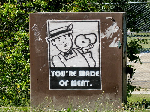 You're Made of Meat, Greenlake in Seattle
