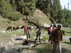 trek to Nanga Parbat Base Camp (Dr. Shahid-Burewala Trekkerz (Mount Everest next)) Tags: pakistan dr shahid burewala