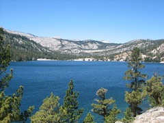 IMG_5437 (Echo Lake, California, United States) Photo