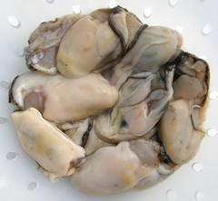Ontdooide oesters