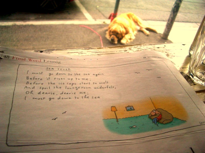Leunig and golden retriever
