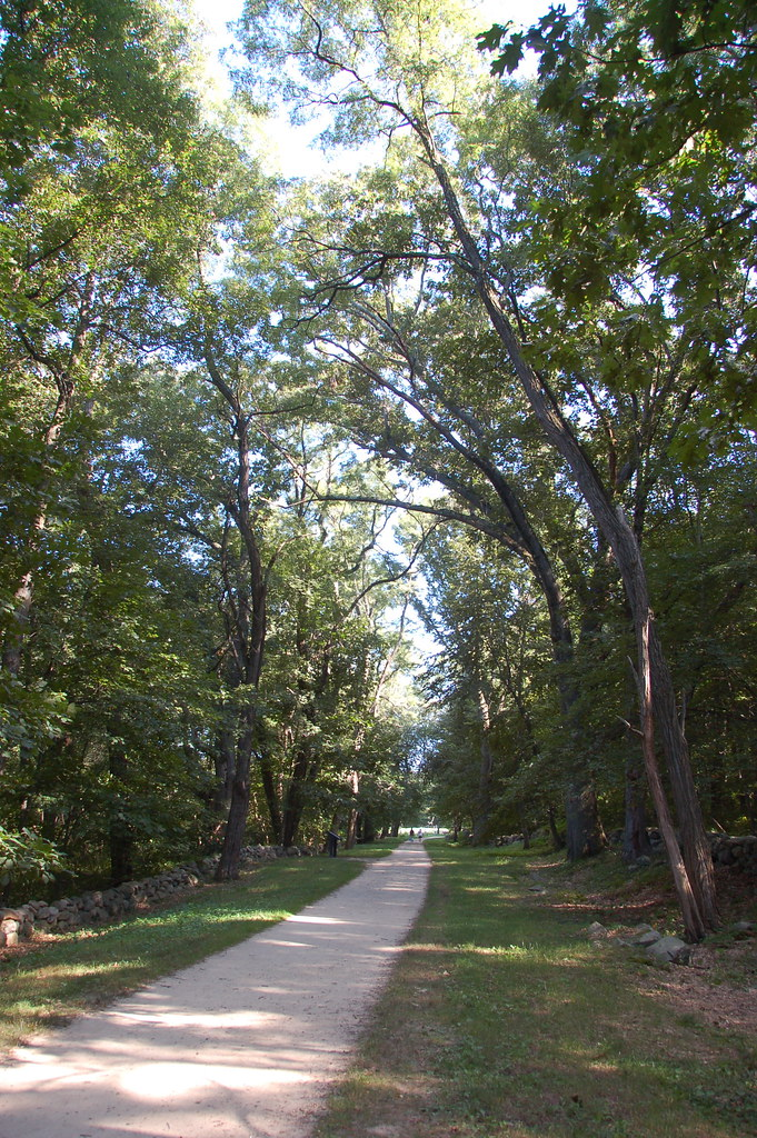 Minuteman National Park: main trail through the woods