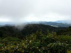 Ausblick über die Cameron Highlands