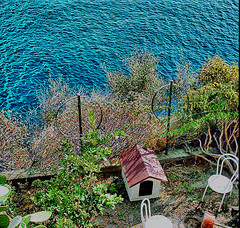 Cinque Terre: a Dog's House with view (!!love_and_lego!! - BUSY -) Tags: italien blue sea italy panorama dog chien mer green water cane chair bravo italia mare view liguria unesco bleu perro cao hund vista cinqueterre doghouse dogbed sedie sedia kennel perrito stuhl riomaggiore hewlettpackard italians caes cagnolino dogsbed 1mpx cuccia dogshouse anawesomeshot holidaysvacanzeurlaub stuhle massimilianogreco hewlettpackard1mpx fototrove