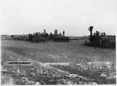 Steam threshing, Portage La Prairie, MB, 1887 (Muse McCord Museum) Tags: horses canada farming grain steam manitoba machinery prairie mb wagons thresher farmmachinery 1887 grainfield portagelaprairie mccordmuseum notman musemccord workcrews steamthreshing