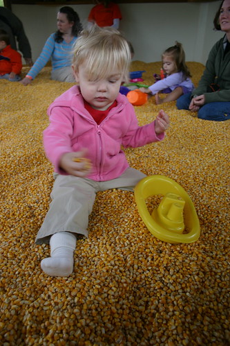 Corn play area