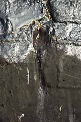 Off the Wall in Seattle (detail 5) 10-11-08 (stevenascroggins) Tags: seattle abstract art history happy layers robertrauschenberg markrothko offthewall ageless franzkline frankstella adreinhardt aaronsiskind robertmotherwell blackpaintings stevescroggins