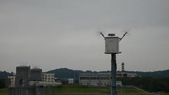 アンテナ付きデバイス