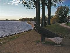 Waren - Uferpromenade (hajo51ja) Tags: mritz waren