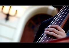 Cello (claudio.marcio2) Tags: musician music art arte musica msico allyouneedislove artisticexpression amazingshot ithinkthisisartaward ysplix superamazingshotsaward