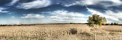 The big picture (_lukas) Tags: panorama landscape farm wheat hdr highway27