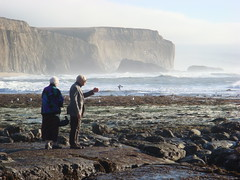 MartinsBeach_2007-028 (Martins Beach, California, United States) Photo