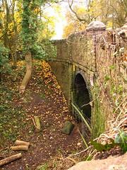 Stone under bridge