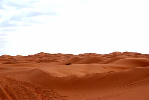 Sand View.jpg