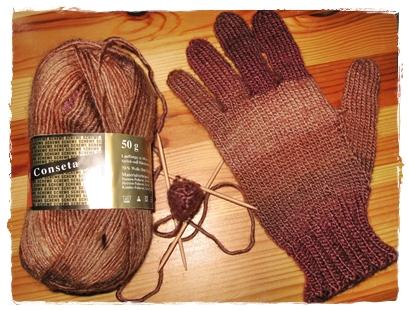 fingerhandschuh2008.3a