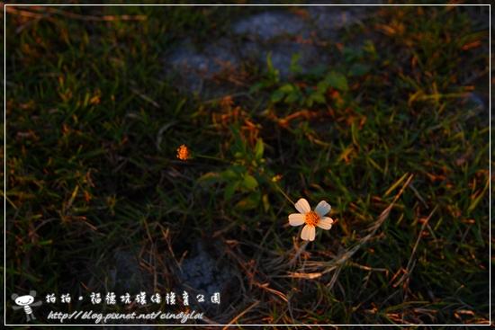 20081129_400D_072