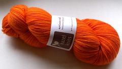 hazel knits sock