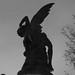Angel caido by Susa1972