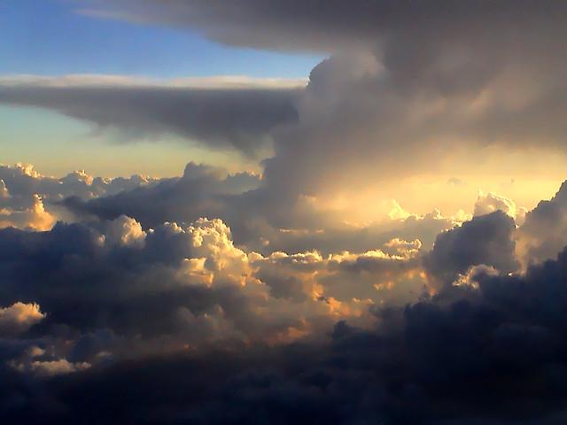 God's Creation vs Evolution's Godlessness   King David