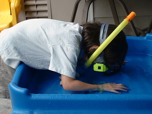 Snorkeling in the water table