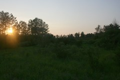 minnesota hunting shack northern