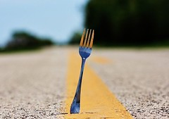 The Proverbial Fork In The Road (Mama_Geek) Tags: road macro fork