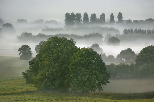 Misty Dawn on the Wentloog Levels