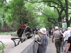 China-0218