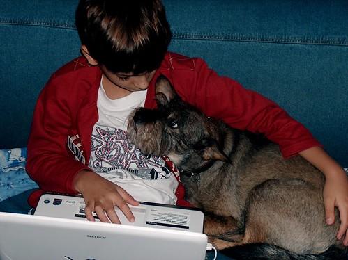 Hund liebt Kind liebt Hund