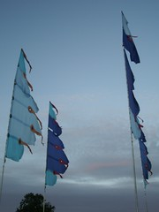 WOMAD blue-grey flags